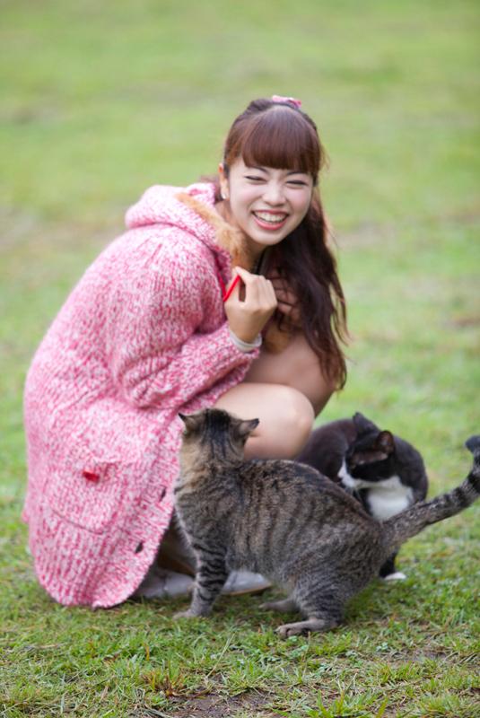 猫と戯れる